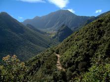 Camino_a_la_Caldera_del_Pululahua