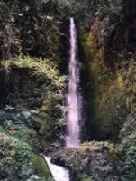 cascada_agua_clara