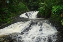 cascada_colorados