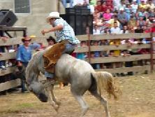 rodeo_montubio