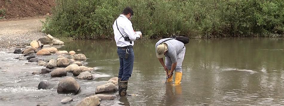 Peces muerto en Río Santa Rosa - Regional 7 - web