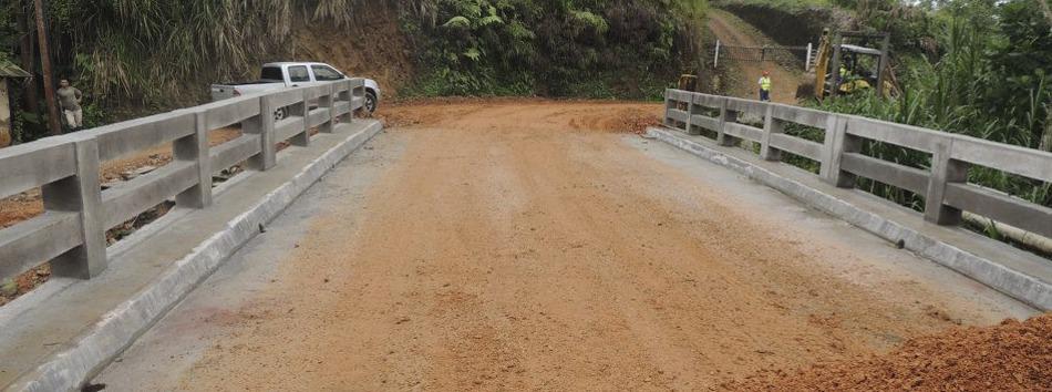Puente Las Tinas - web